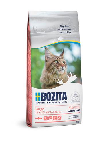 Wheat Free Salmon Torrfoder för stor katt