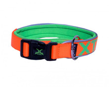 Neon Flash Collar