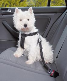 Bilsele för liten hund