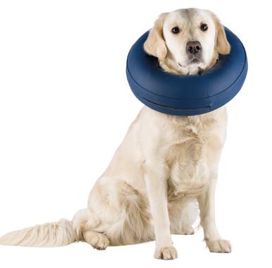 Uppblåsbar krage för hund & katt