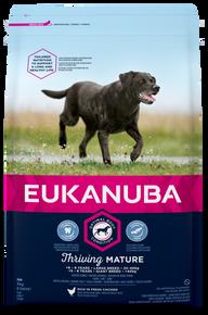 Dog Mature Large