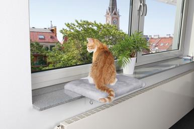 Fönsterbräda för katt