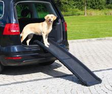 Ihopfällbar Ramp för hund