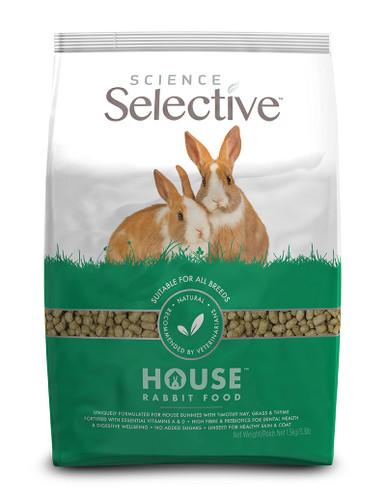 House Rabbit Foder