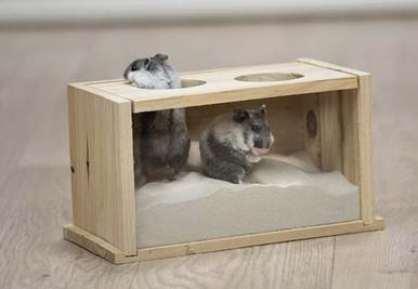 Sandbad för Hamster & Mus