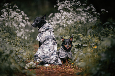 Reflekterande Regnjacka Hund, Camo