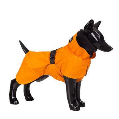 Reflekterande Regnjacka Hund, Orange