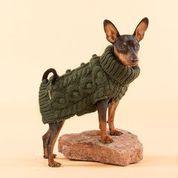 Handstickad tröja för hund, Grön