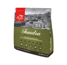 Dog Tundra