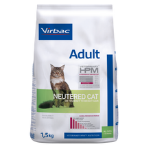 Adult Neutered Cat