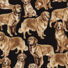 Timeless Treasures Golden Retriever Dog 100% Cotton (TT Golden Retriever)