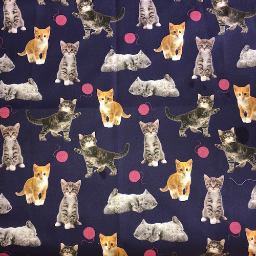 The Vintage Sweetheart Cute Kittens Playing with Wool on Navy 100% Cotton Remnant (47 x 47cm VS Playing Kittens)
