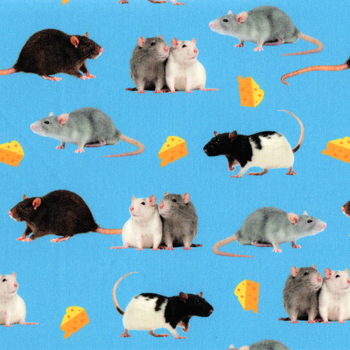 The Vintage Sweetheart Pet Rats & Cheese Blue 100% Cotton (VS Rats -1 METRE PIECE)