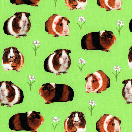 The Vintage Sweetheart Guinea Pigs & Daisy Green 100% Cotton (VS Guinea Pigs -1 METRE PIECE)