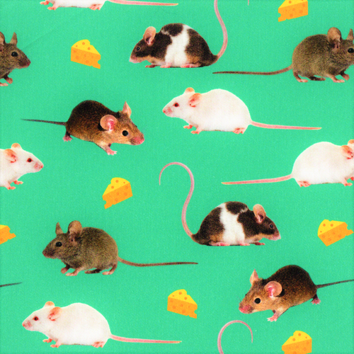 The Vintage Sweetheart Pet Mice & Cheese Green 100% Cotton (VS Mice -1 METRE PIECE)