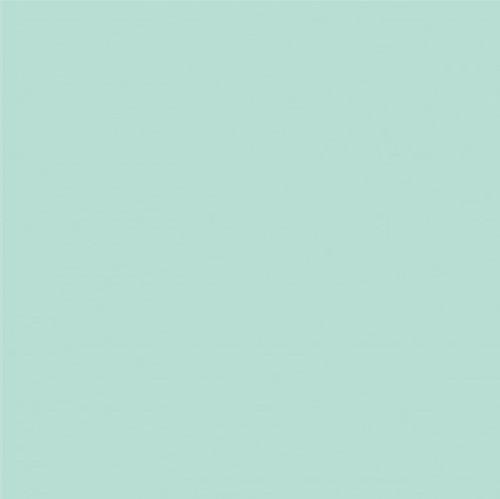 Riley Blake Confetti Cottons Plain Songbird Green 100% Cotton (Confetti Cottons Songbird)