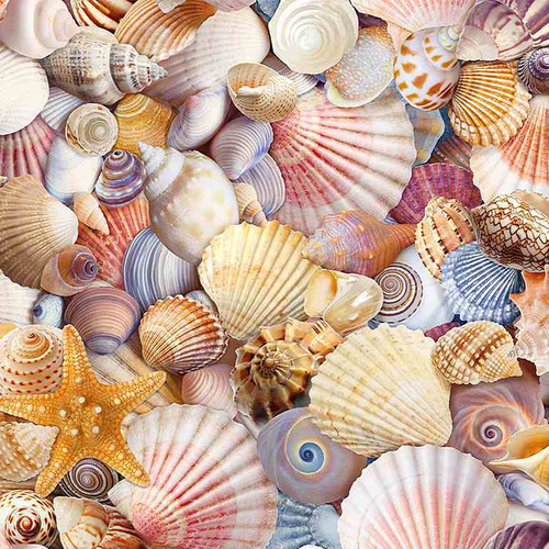 Timeless Treasures Beach Day Assorted Packed Beach Shells Multicoloured 100% Cotton (TT Beach Day 2)