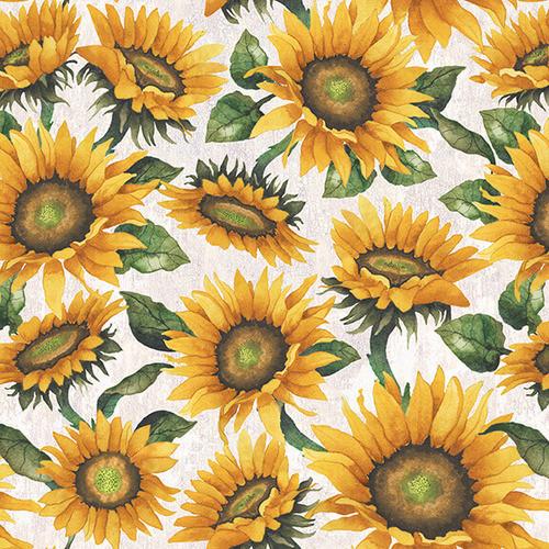 Blank Quilting Fall Delight Sunflowers Ecru 100% Cotton (BQ Fall Delight 3)