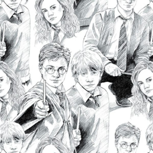 Harry Potter Sketch Characters Black & White 100% Cotton (Harry Potter 3)