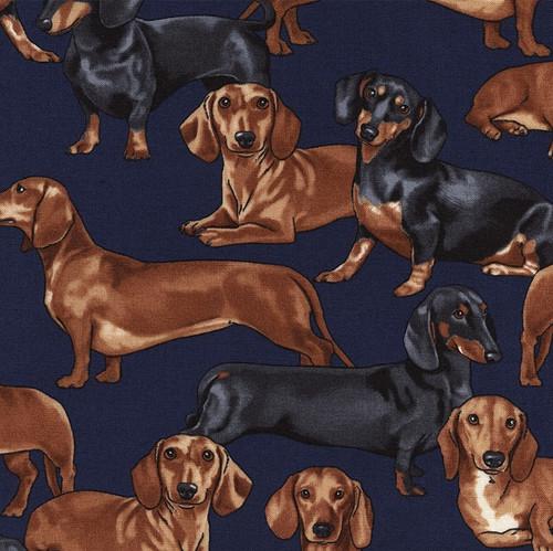 Timeless Treasures Dachshund Cute Dogs Navy 100% Cotton (TT Dachshund)
