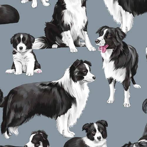 Timeless Treasures Dog Border Collies Grey 100% Cotton (TT Border Collies)