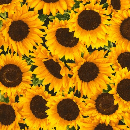 Timeless Treasures Pretty Yellow Sunflowers 100% Cotton (TT Sunflowers)