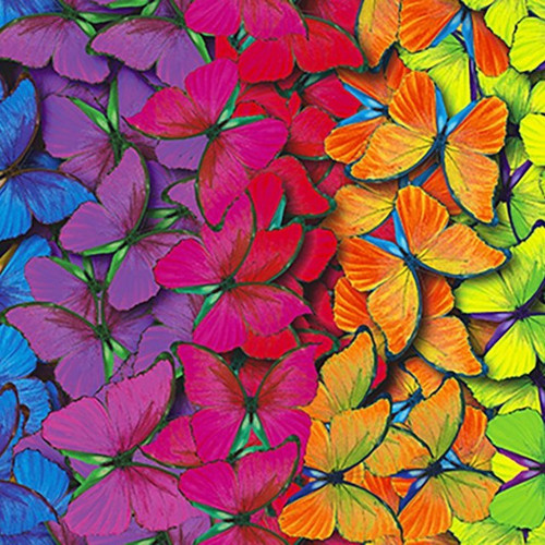 Digital Pretty Rainbow Coloured Butterflies 100% Cotton (Digital Rainbow Butterfly)