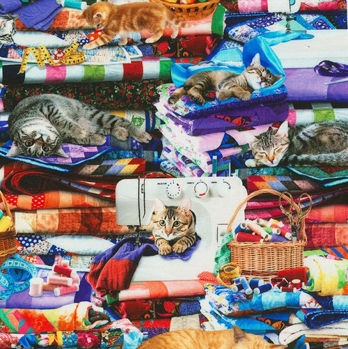 Timeless Treasures Cats & Sewing Multicoloured 100% Cotton Remnant (34 x 112cm TT Cats On Quilts)