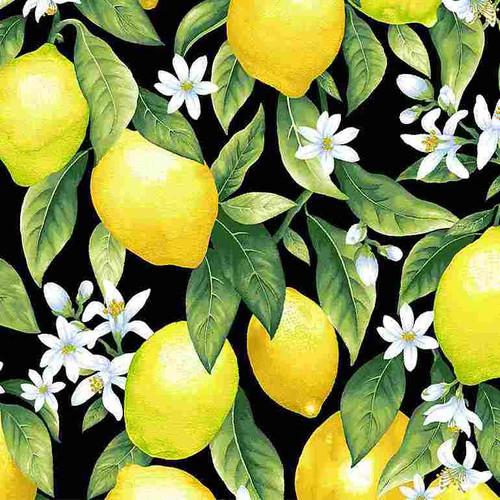 Timeless Treasures Splash Of Lemon Lemons & Blossoms Black 100% Cotton (TT Splash Of Lemons Black)