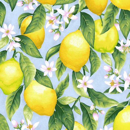 Timeless Treasures Splash Of Lemon Lemons & Blossoms Blue 100% Cotton Remnant (38 x 112cm TT Lemons & Blossoms)