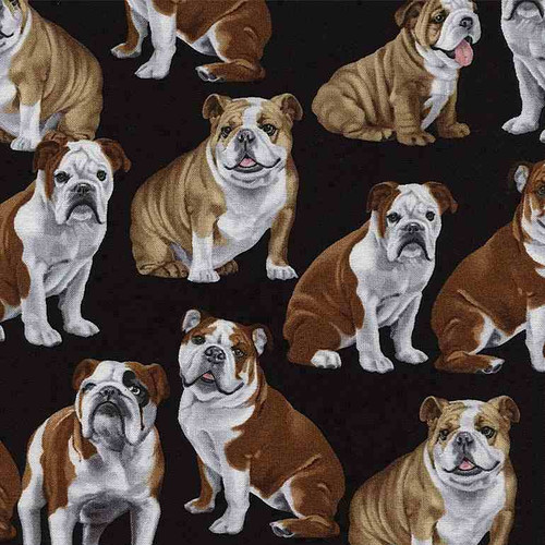 Timeless Treasures English Bulldogs Black 100% Cotton Remnant (29 x 112cm TT English Bulldogs)