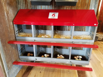 Duncan's Poultry 8 Hole Standard Nest - Made in USA!