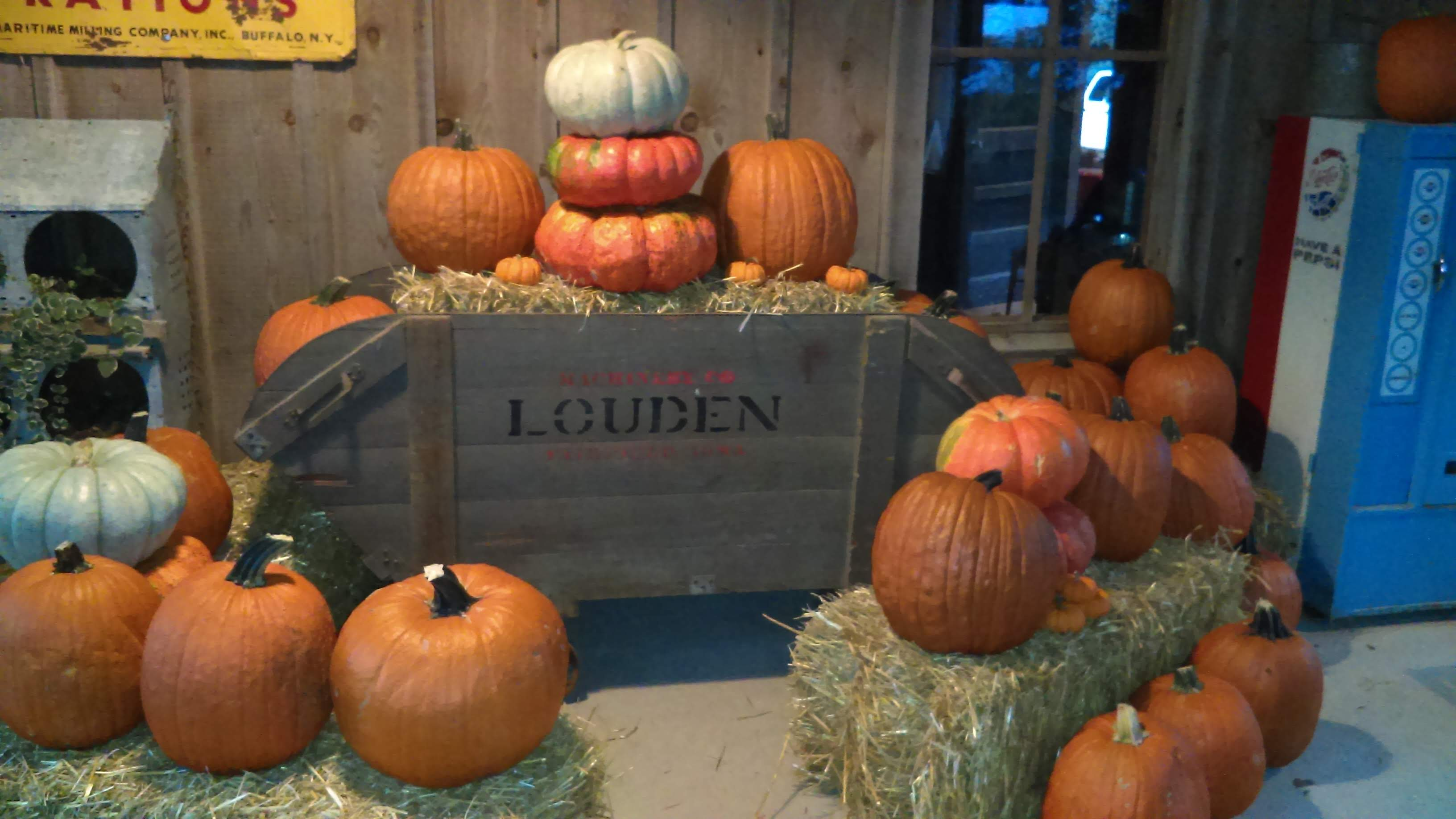 country-store-fall-2019.jpg