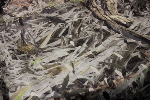 Max-Hunter Camo Hunting Blind 12ft x 54""