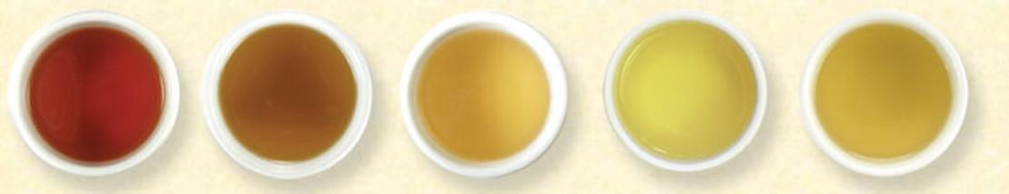 Understanding Tea Types