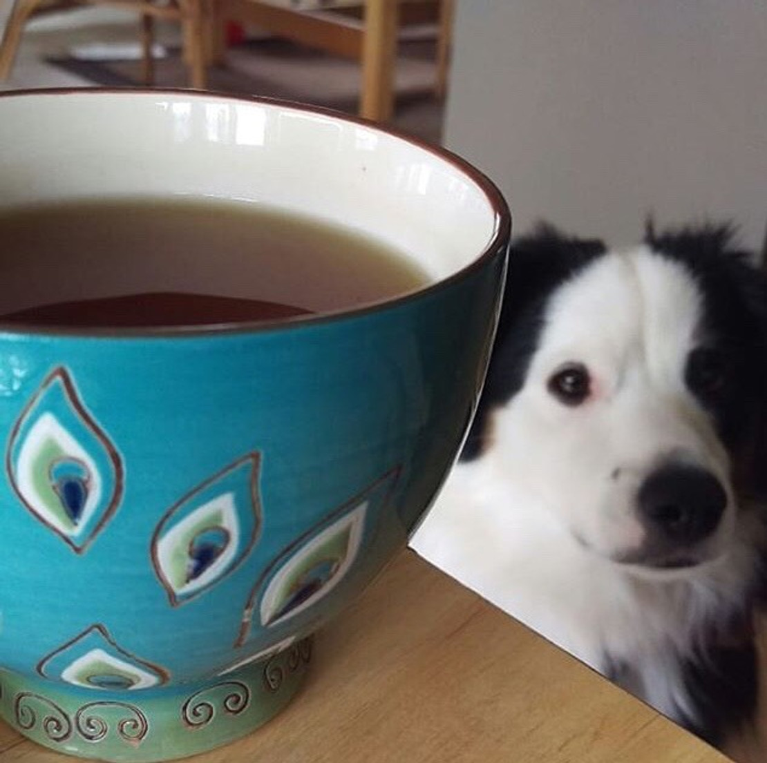 Winner of the #myfavoritemug Contest!
