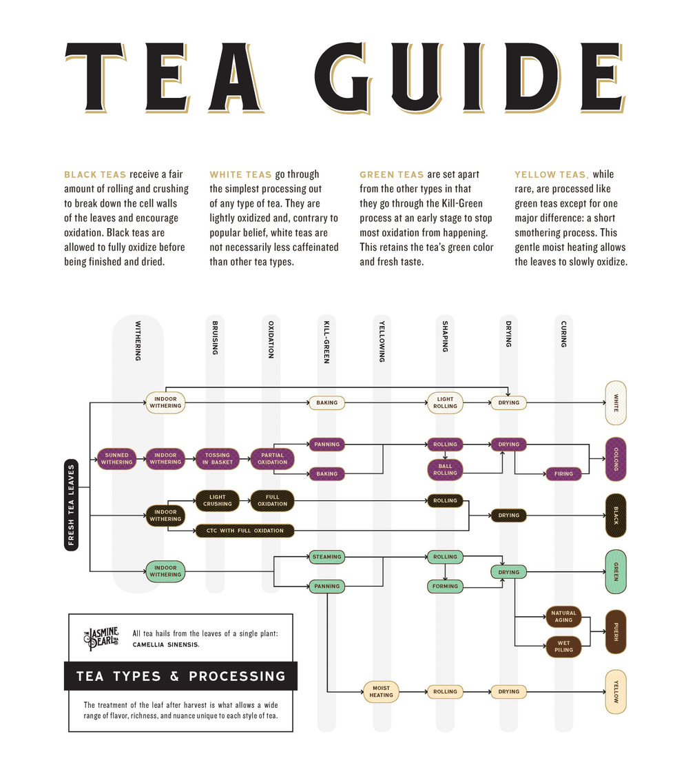 Tea Processing: How are different teas made?