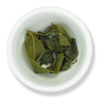 Alishan Oolong wet leaf from The Jasmine Pearl Tea Co.