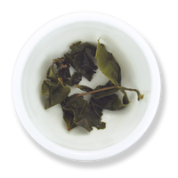 Green Jade oolong wet leaf from The Jasmine Pearl Tea Co.