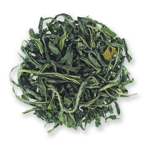 Tranquility Mao Jian loose leaf green tea from The Jasmine Pearl Tea Co.