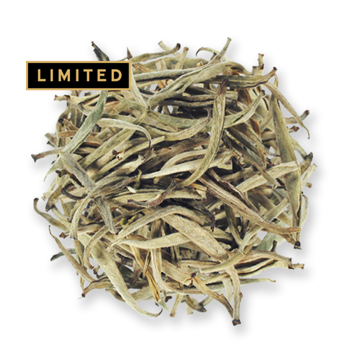 Silver Needles loose leaf white tea from The Jasmine Pearl Tea Co.