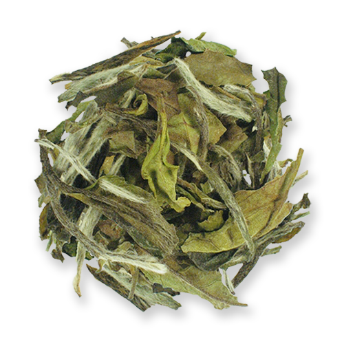 White Peony (Bai Mudan) loose leaf white tea from The Jasmine Pearl Tea Co.