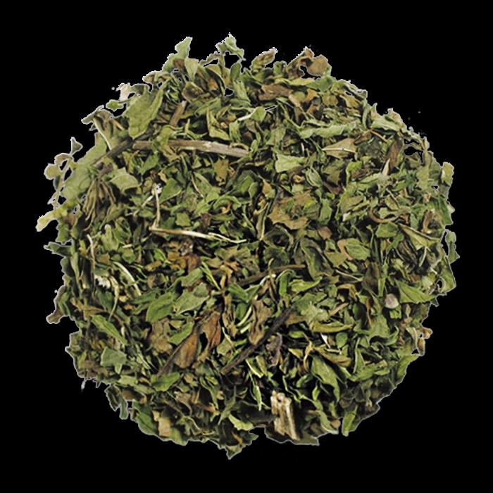 Spearmint  from The Jasmine Pearl Tea Co.
