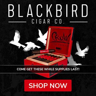 blackbird-tile-367.jpg