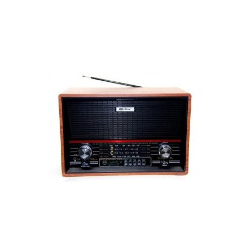 Pu Xing Bluetooth PX-2002BT Radio