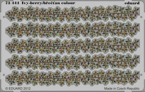 Ivy-berry / brectan Colour- 1:72 -Eduard