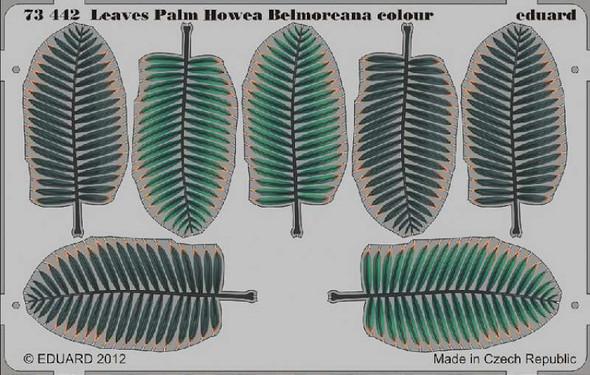 Leaves Palm Howea Belmoreana Colour- 1:72 -Eduard