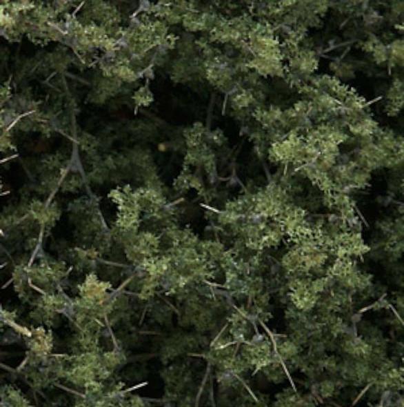 Fine Leaf Foliage Medium Green