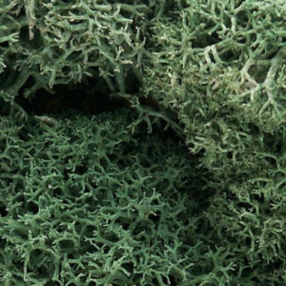 Woodland Scenics L162 Light Green Lichen