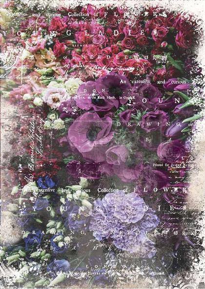 "Prima Marketing Re-Design Mulberry Tissue 19""x30"" Giselle"